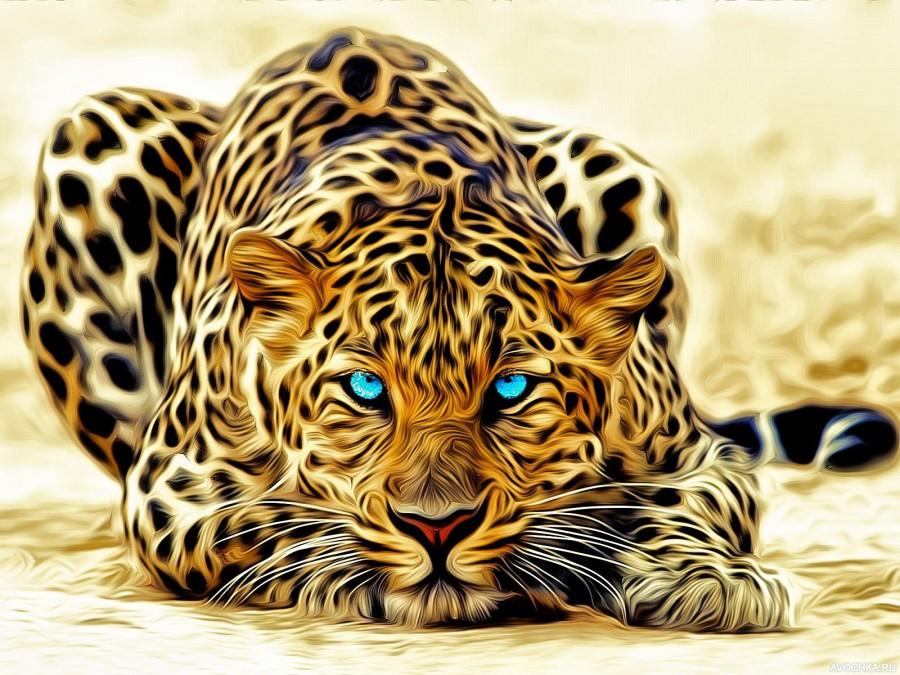 https://avochka.ru/img/kartinka/1/foto_s_krasivym_leopardom.jpg